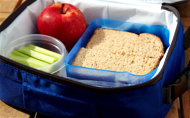 Ekoskola – Packed Lunches Student Survey