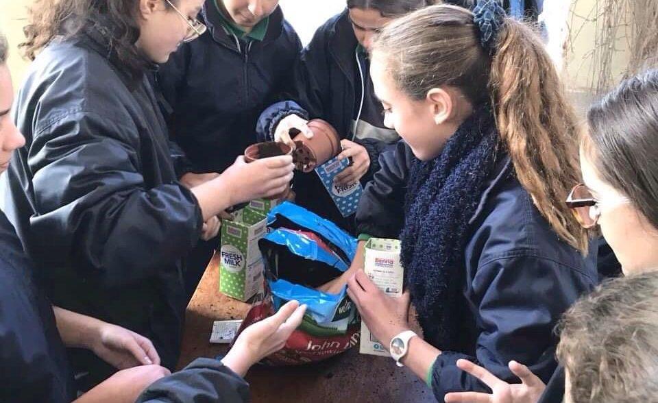 EkoSkola Seed Planting Initiative
