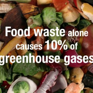 Food Waste Survey in COVID-19 Times