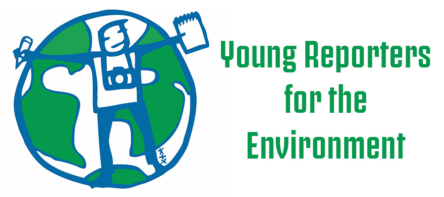Young Reporters for the Environment – Results
